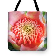 Wonderful Bright Pink Waratah Bud Tote Bag