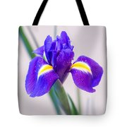 Wonderful Iris With Dew Tote Bag