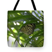 Wonderful Look At A Tree Nymph Butterfly In Foliage Tote Bag