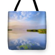 Wonderful Morning IIi Tote Bag