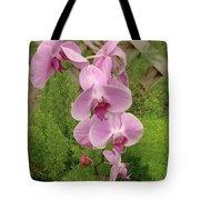 Wonderful Orchid Tote Bag