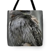 Wonderful Patterned Feathers On A Tawny Frogmouth Bird Tote Bag