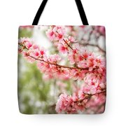 Wonderful Pink Cherry Blossoms At Floriade Tote Bag