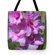Wonderful Pink Gladiolus Tote Bag