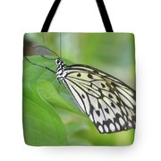 Wonderful Up Close Look At A Large Tree Nymph Butterfly Tote Bag