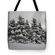 Wonderful Winter Tote Bag
