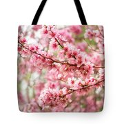 Wonderfully Delicate Pink Cherry Blossoms At Canberra's Floriade Tote Bag