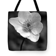 Wood Anemone 6 Tote Bag