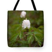 Wood Anemone Heavy From The Rain Tote Bag