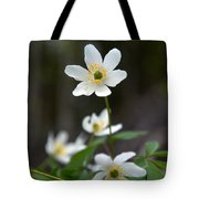 Wood Anemone  Tote Bag