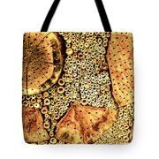 Insect Hotel #2 Tote Bag