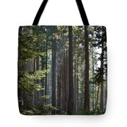 Wood Tote Bag by Atul Daimari