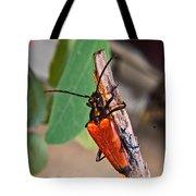 Wood Beetle Exploring Tote Bag