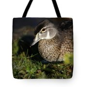 Wood Duck Female Tote Bag