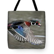 Wood Duck In Action Tote Bag