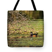 Wood Duck In The Fall Tote Bag