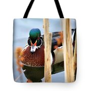 Wood Duck In The Reeds Tote Bag