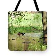 Wood Duck Mates Tote Bag