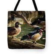 Wood Ducks Posing On A Log Tote Bag