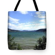 Wood Lake In Summer Tote Bag