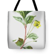 Wood Loosestrife Tote Bag