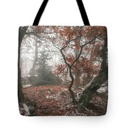 Wood Mystery  Tote Bag