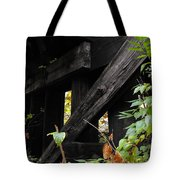 Wood Rail Underpass Tote Bag