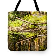 Wood Reflections Tote Bag