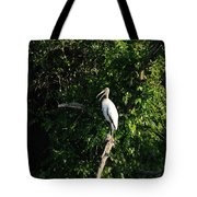 Wood Stork-out On A Limb Tote Bag