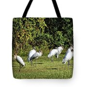 Wood Storks 2 - There Is Always One In A Crowd Tote Bag