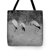 Wood Storks By The Water's Edge Tote Bag