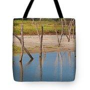 Wood Walk Tote Bag