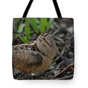 Woodcock In The Woods Tote Bag
