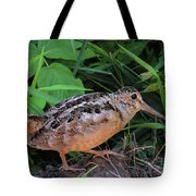 Woodcock Tote Bag