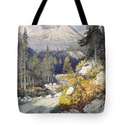 Wooded Landscape With A Path And A Mountain Beyond Tote Bag