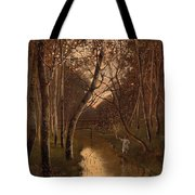 Wooded Landscape With Angler On The Riverside Tote Bag