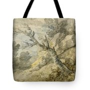 Wooded Landscape With Rocks And Tree Stump Tote Bag