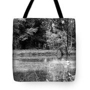 Wooded Pond Tote Bag