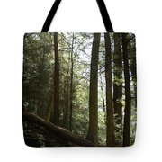 Wooded Serenity Tote Bag