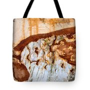 Wooden Landscape - Natural Abstract Structure Tote Bag