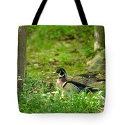 Woodies Feeding Tote Bag
