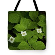 Woodland Bunchberry Blossoms Tote Bag