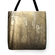 Woodland Glade 2 Tote Bag