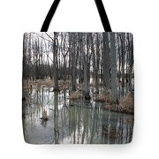 Woodland Stillness  Tote Bag
