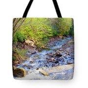 Woodland Stream And Waterfall, Hickory Run, Pocono Mountains Tote Bag