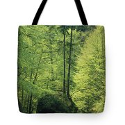 Woodland View With Stream, Sachsische Tote Bag