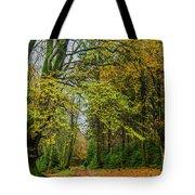 Woodland Walks #1 Tote Bag