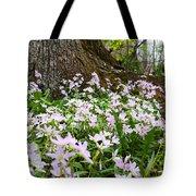 Woodlands Spring Beauty Tote Bag