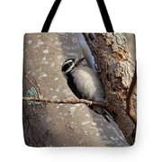 Woodpecker Feb 2011 Tote Bag