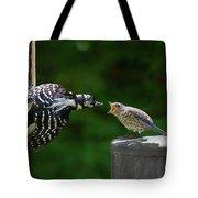 Woodpecker Feeding Bluebird Tote Bag